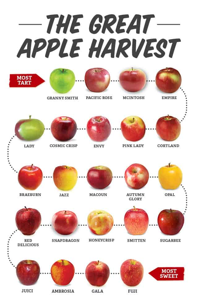 The Great Apple Harvest apple chart from tart to sweet