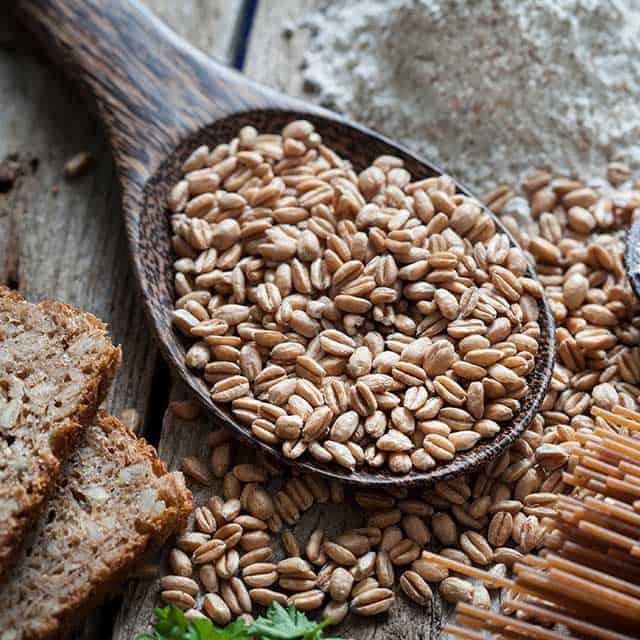 wooden spoon with vegan grains